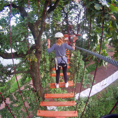 Adventure Park Tree To Tree Ozerki