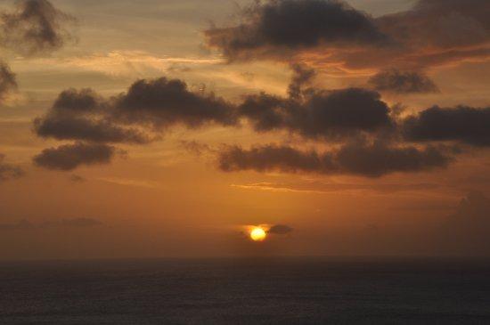 Guana Island Foto