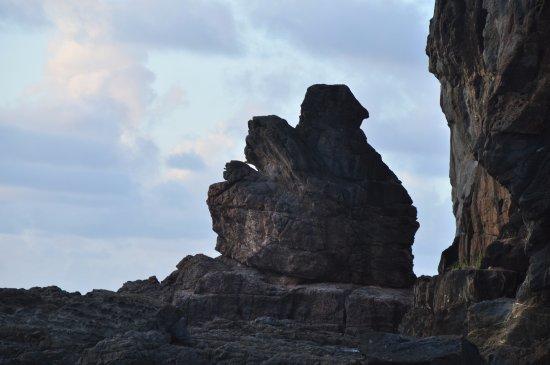 Guana Island Photo