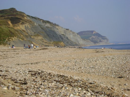 The beach at Charmouth, looking east towards Golden Cap.