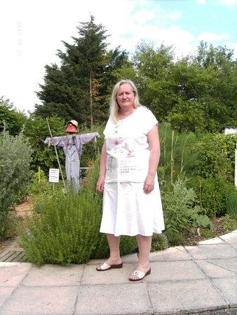 Chavannes-sur-Reyssouze, France: A proximité du jardinet aux différents légumes et herbes aromatiques
