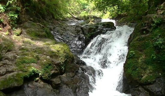 Nosara Paradise Rentals: Water falls