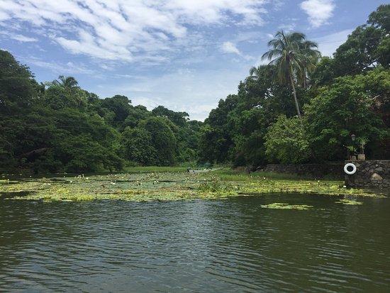 Granada, Nicaragua: photo2.jpg