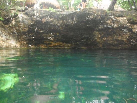Jumping Cliff Picture Of Cenote Jardin Del Eden Yucatan Tripadvisor