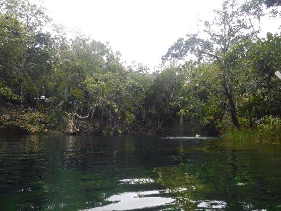 Yucatan, المكسيك: cenote jardin del eden