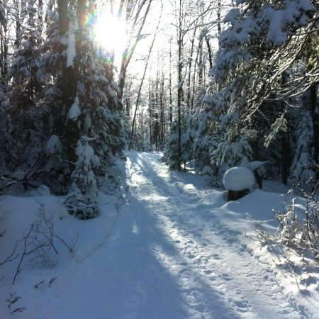 Haliburton, Canada: Winter in the Highlands - photo from one of our hiking trails.