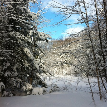 Haliburton, Canada: Photo from one of our hiking trails.