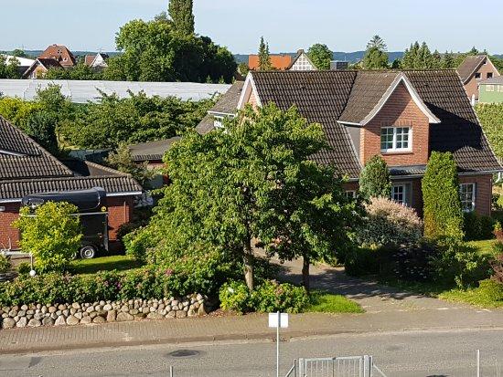Gruenendeich, Allemagne : 20170621_080457_large.jpg