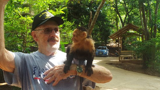 Flowers Bay, ฮอนดูรัส: Al enjoying the monkeys at Mayan Eden.