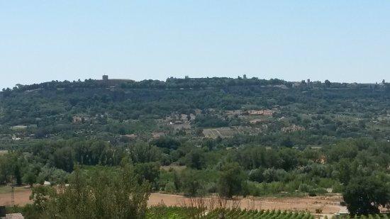 Agriturismo Il Poggio Di Orvieto Photo