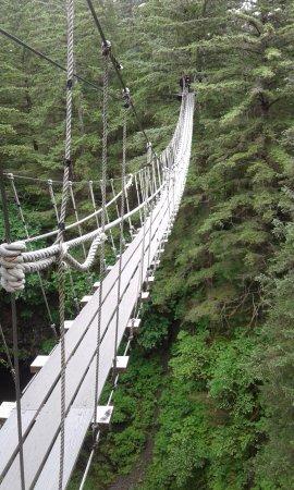 Alaska Canopy Adventures: 2 suspension bridges to cross