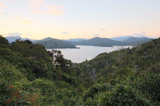 Picton, Nueva Zelanda: Vue