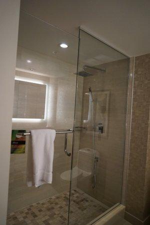 Fairmont Waterfront: Junior suite shower