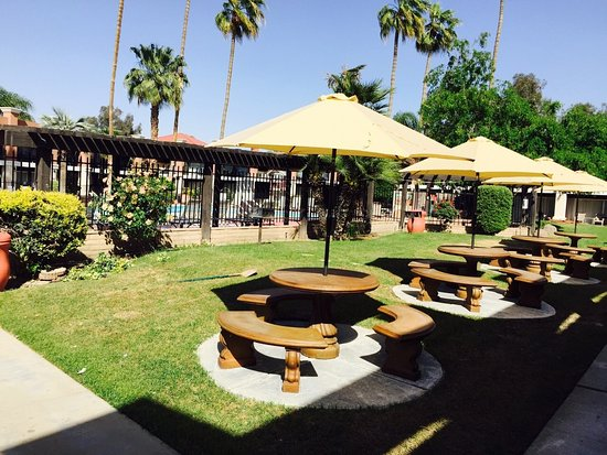 Hotel Rosedale: Picnic Area