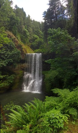 Sublimity, OR: Silver Falls State Park