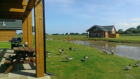 Hornsea, UK: photo1.jpg