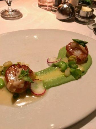 Restaurant Gary Danko: scallops