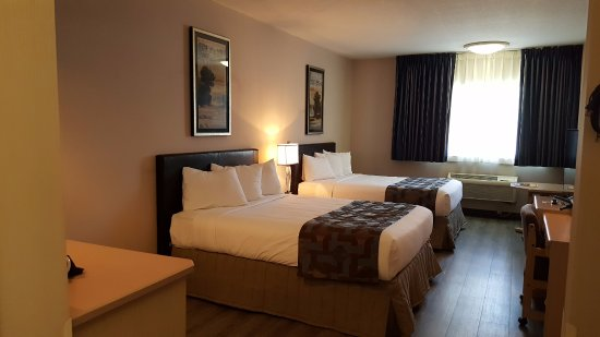Elko, NV: Enjoy newly remodeled beautiful rooms with friendly Shilo service.