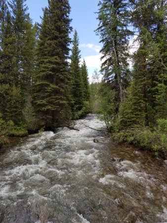 Cooke City, MT: Clarks Fork Trail - Beartooth Creek