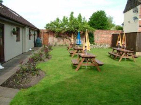 Castle Cary, UK: beer garden