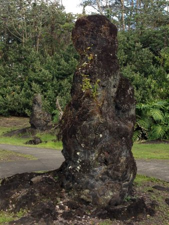 Pahoa, Hawaï: lava tree