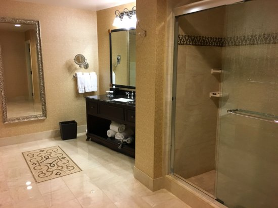 The Roosevelt New Orleans, A Waldorf Astoria Hotel afbeelding