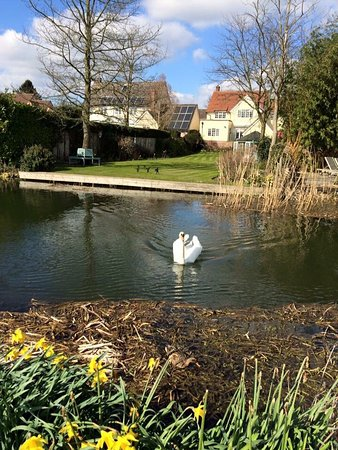 Nayland, UK: Beautiful area, great pub with excellent food and service. Visited here many times.