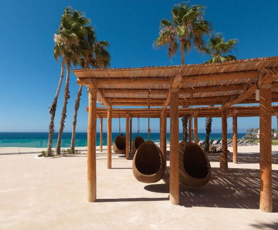 Good Restaurants In Los Cabos