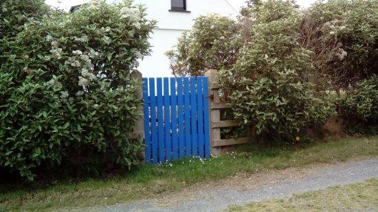 Portaferry, UK: DSC_1101_large.jpg