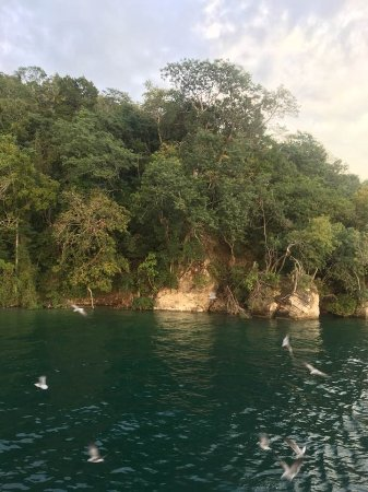 Zdjęcie Camino Real Tikal