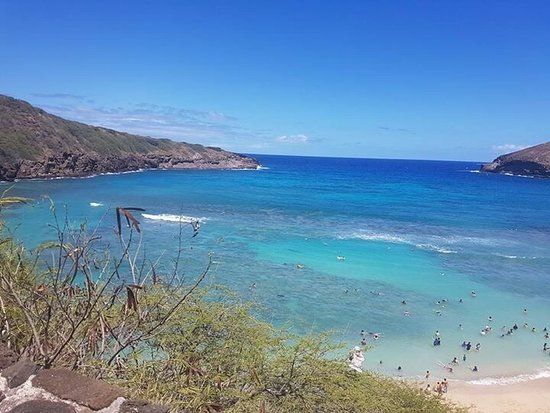 Hanauma Bay Nature Preserve: photo2.jpg