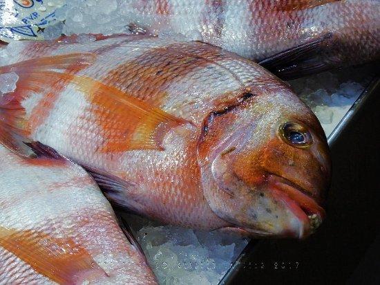 Sanlúcar de Barrameda, España: Wie heißt dieser Fisch?