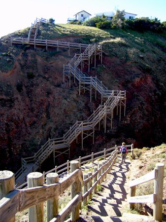 Marion Coastal Walking Trail: Some of the stairs