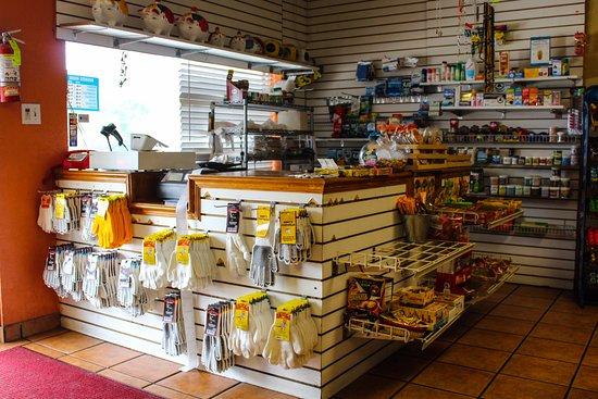 Arcadia, FL: Store