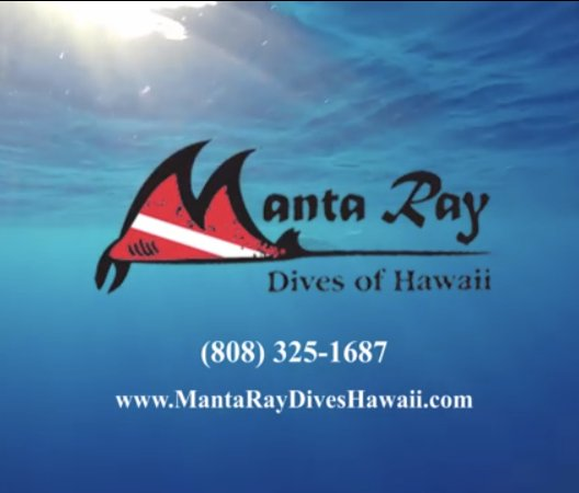 Manta Ray Dives of Hawaii