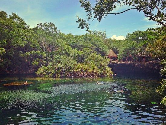 ยูกาตัง, เม็กซิโก: literalmente um jardim do eden