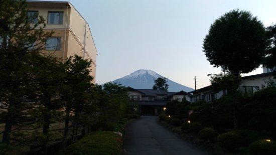 Fuji Matsuzono Hotel : 富士美華飯店