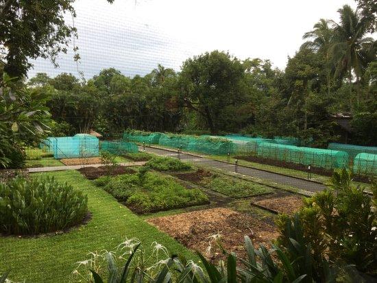 The Farm at San Benito: photo1.jpg