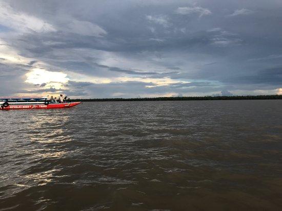 Commewijne River : photo1.jpg