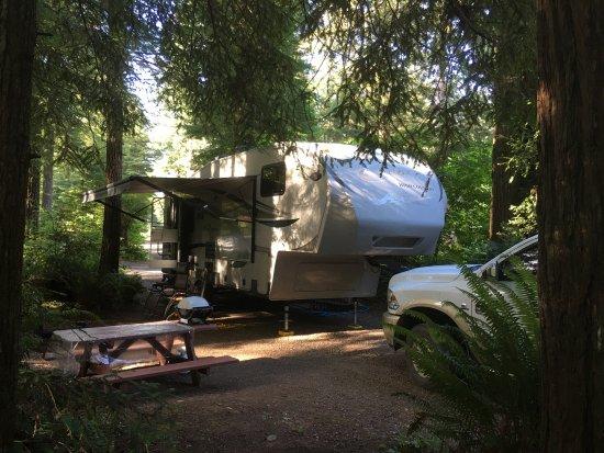 The Redwoods RV Resort Photo