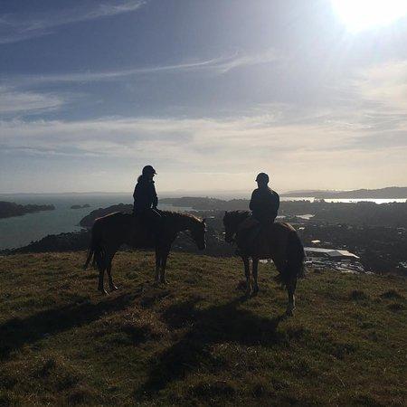 Waiheke Equestrian