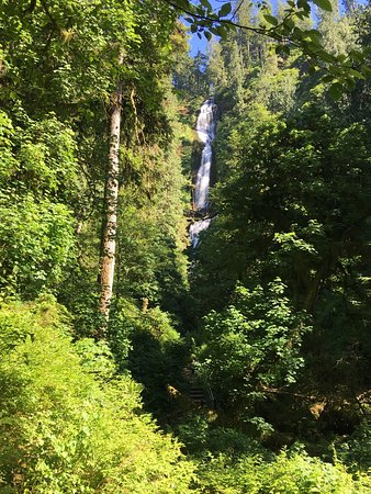 Cape Lookout Bed n Breakfast: Hike to Cape Lookout 5 mins from room. Munson Falls 20 mins from room. Both gorgeous.