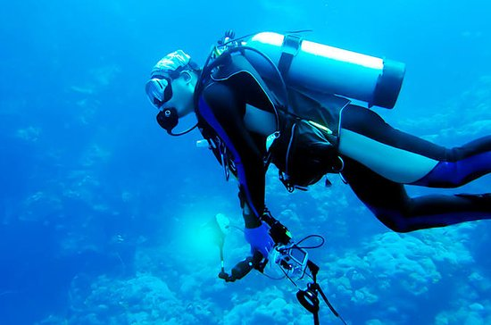 One Day PADI Scuba Diving Adventure ...