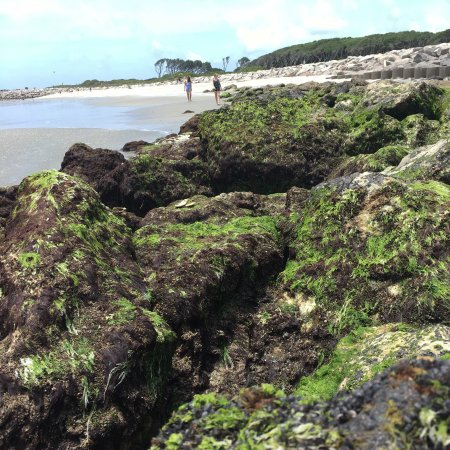 Kure Beach, Carolina del Norte: photo1.jpg