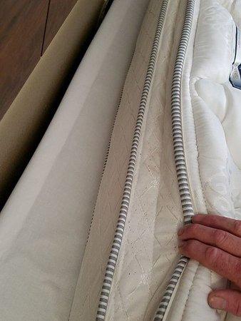 Waterloo, IA: headboard side of pillowtop....ewwwww