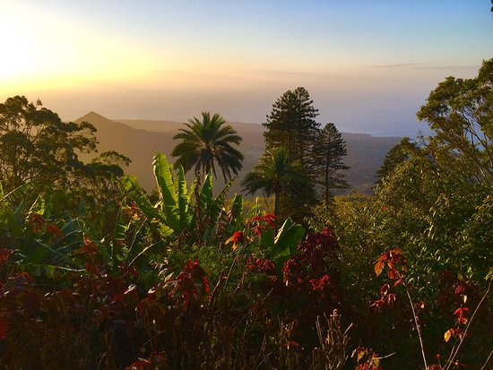 Green Mountain National Park Ascension Island St Helena