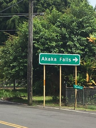 Skyline Eco Adventures - Akaka Falls: We had a wonderful time, our guides were amazing!