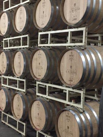 Valle de Guadalupe, Messico: Wine Storage 3