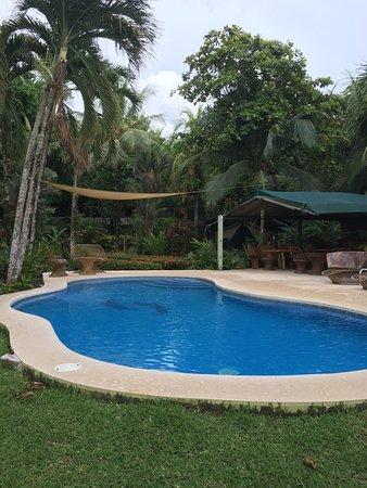 Playa Matapalo, كوستاريكا: photo8.jpg