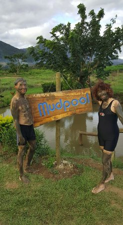 Sabeto Hot Springs and Mud Pool: The mud is cold. We have to go in the first pool to wash it off.